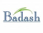 Badash